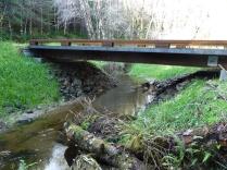 Downstream of Bridge