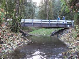 DS of Bridge