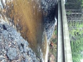 stevens creek dec 2012
