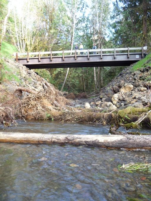 Upstream from Wishkah